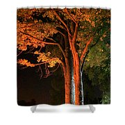 Forest Of Darkness Shower Curtain
