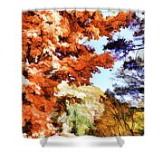 Forest Of Fall Colors Shower Curtain