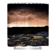 Forest Of Fontainebleau Shower Curtain