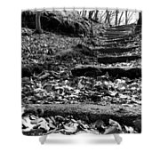 Forest Of Illusion Shower Curtain