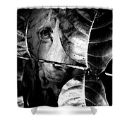 Forest Of The Labyrinth Lion Shower Curtain