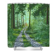 Forest Path 2 Shower Curtain