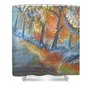 Forest Path.... Shower Curtain