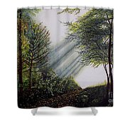 Forest Pathway Shower Curtain