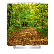 Forest Road In The Fall Shower Curtain