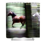 Forest Run Shower Curtain