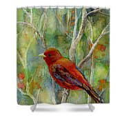 Forest Serenity Shower Curtain
