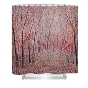 Forest Stillness. Shower Curtain