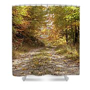 Forest Stone Path Shower Curtain