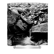 Forest Stream In Black And White Shower Curtain