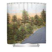Forest Sunrise Beach Shower Curtain