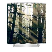 Forest Sunrise Shower Curtain