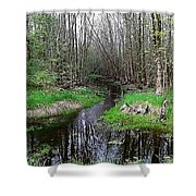 Forest Trees Creek Pathway Shower Curtain