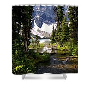 Forest View To Mountain Lake Shower Curtain by Greg Hammond
