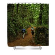 Forest Walkers, El Camino, Spain Shower Curtain
