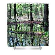 Forest Wetland Shower Curtain