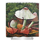 Forest Wonders Shower Curtain