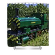 Forester Shower Curtain