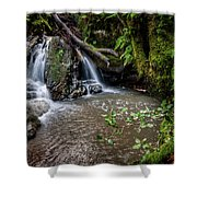 Forests Deep Shower Curtain