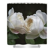 Forever And Always - Desdemona Roses Shower Curtain