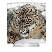 Forever Wild Shower Curtain