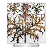Forget-me-not & Acanthus Shower Curtain