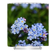 Forget Me Not 1 Shower Curtain
