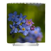 Forget Me Not 2 Shower Curtain