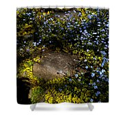 Forget-me-nots 1 Shower Curtain