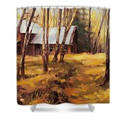 Forgotten Path Shower Curtain
