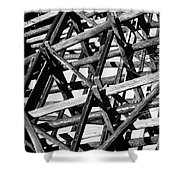 Form And Function 2 Shower Curtain