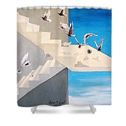 Form Without Function Shower Curtain