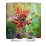 Formal Extravagance 2471 Idp_2 Shower Curtain