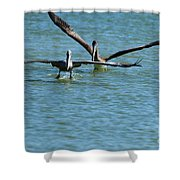 Formate Shower Curtain