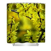 Forsythia At The Hacienda Shower Curtain