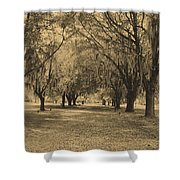 Fort Frederica Oaks Shower Curtain