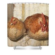 Forty Winks Shower Curtain by JG Marks