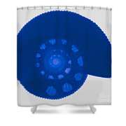 Fossil Ammonite, X-ray Shower Curtain