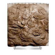 Fossil Family Shower Curtain