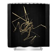 Fossil Record - Gold Pterodactyl Fossil On Black Canvas #1 Shower Curtain