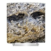 Fossil Rock Abstract - Eyes Shower Curtain