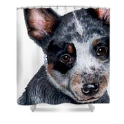 Foster Detail Shower Curtain