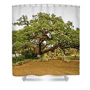 Founders Oak Shower Curtain