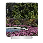 Fountain And Mums Shower Curtain
