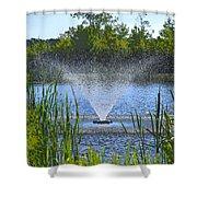 Fountain Art Shower Curtain