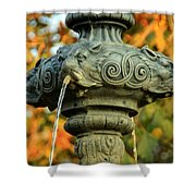 Fountain At Union Park Shower Curtain
