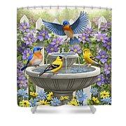 Fountain Festivities - Birds And Birdbath Painting Shower Curtain