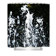 Fountain Of Youth Shower Curtain
