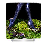 Fountain Sculpture Shower Curtain by Will Borden