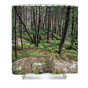 Fountainbleau Forest Shower Curtain